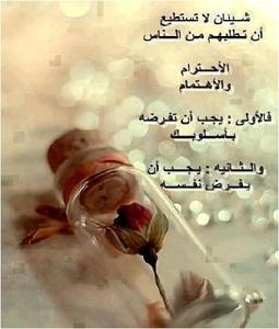 ه نا نبض ح ك م ة شعر أمثال شعبي ة طرائف الصفحة 216