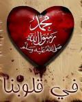 الله image.php?u=52155&am